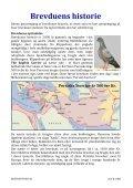 artikel: brevduen som langflyver - Dansk Brevduesport - Page 2