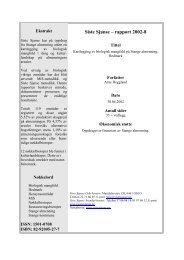 Siste Sjanse – rapport 2002-8