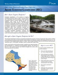 aquatic ecosystem classification - Ministry of Natural Resources ...