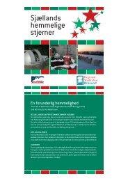 Julefolder: Sjællands hemmelige stjerner (dansk) / Jul på Söderslätt