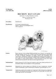PDF-file: Bichon havanais - Dansk Kennel Klub
