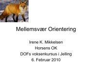 V2 Ledelinier PowerPoint Jelling 06-02-2010