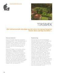 Hent afsnittet om Tirsbæk (pdf)