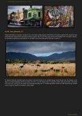 Australien - Navisa & Ohji ON THE ROAD - Page 4