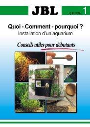 Installation d'un aquarium - conseils utiles pour débutants - Truffaut