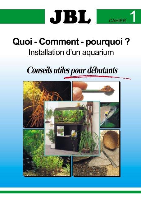 Installation d\'un aquarium - conseils utiles pour débutants ...