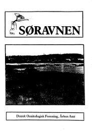 nr. 4 (særnummer om Brabrand Sø) - DOF Østjylland
