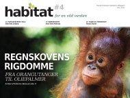 HABITAT-4_December-2011