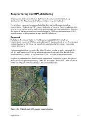 Busprioritering med GPS-detektering - Vejforum