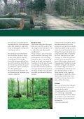 A4 TEMA - Djursland Landboforening - Page 3