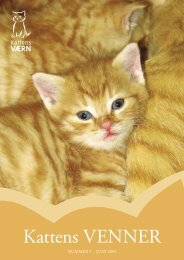 Kattens Venner Nr. 2 - Kattens Værn