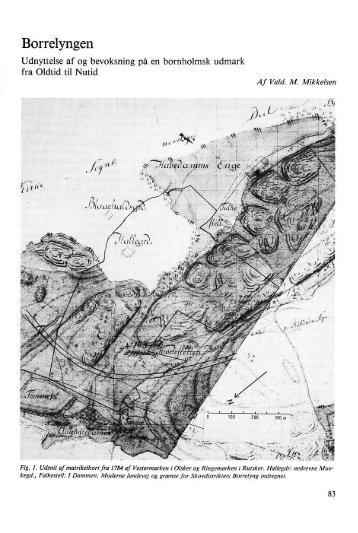 Borrelyngen - 1. del - Bornholms Historiske Samfund