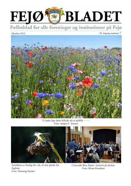 Download bladet her - Nyheder fra Fejø – Huse til salg