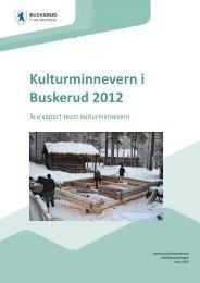 Årsrapport 2012.pdf - Buskerud Fylkeskommune