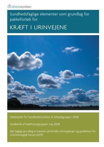 KRÆFT I URINVEJENE - NTs hjemmeside om nyrekræft