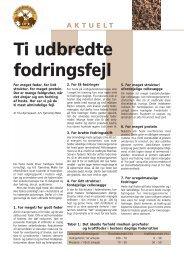 Ti udbredte fodringsfejl.pdf