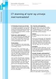 CT skanning af nyrer og urinveje med kontraststof - EPIS - Gentofte ...