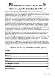 Situationsanalyse for den østlige del af Åmosen - Naturstyrelsen