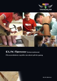 EUX-Tømrer/International Få svendebrev og bliv student ... - Tradium