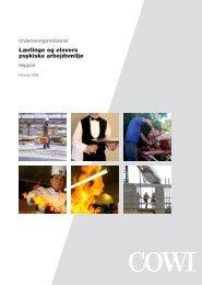 Lærlinge og elevers psykiske arbejdsmiljø.pdf | M... - Cowi