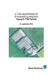 Torpvej 6, § 12 Miljøgodkendelse ( - Struer kommune