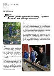 Rapport Seminar i praktisk og prosessuell restaurering ...