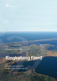 Ringkøbing Fjord - Billund Kommune