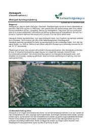 Økologisk dyrkningsvejledning for asieagurk - LandbrugsInfo