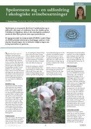 Spolormens æg - en udfordring i økologiske ... - ICROFS