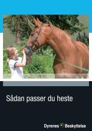 Sådan passer du heste - EOR