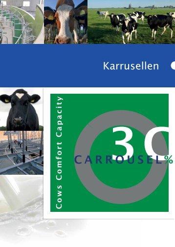 Karrusellen - Hulst Innovatie