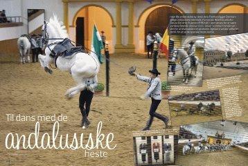 til dans med de heste