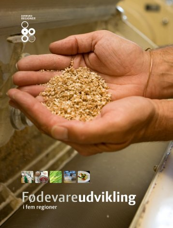 Fødevareudvikling i fem regioner - Region Midtjylland