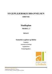 125115.Studieplan - Modul 3 - endelig udgave.pdf