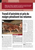 veaux sous la mère recherchent éleveurs - Veau sous la Mère - Page 3