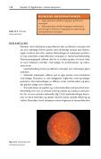 KAPITEL 12 - Page 7