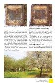 """kurt holbæks rationelle og """"grønne"""" erhvervsbiavl - Honningagergaard - Page 5"""