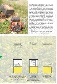 """kurt holbæks rationelle og """"grønne"""" erhvervsbiavl - Honningagergaard - Page 7"""
