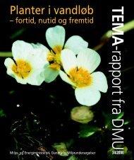 Planter i vandløb – fortid, nutid og fremtid - DCE - Nationalt Center ...