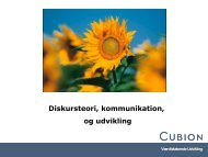Seminar 2 - Oplæg ved Randi - Cubion