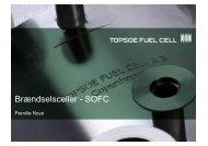 Brændselsceller Folkeskolelærekursus-kort 110908