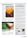BASE cAMP - Beredskabsstyrelsen - Page 5