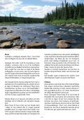 FlueFisker - Federation of Fly Fishers Denmark - Page 5