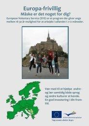 Læs vores EVS brochure her