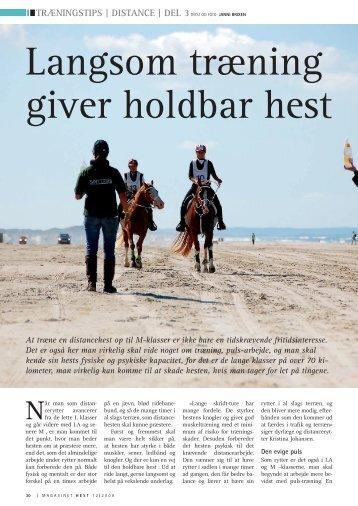 Langsom træning giver holdbar hest - Hestemagasinet.dk