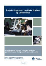 Projekt Unge med psykiske lidelser og uddannelse - Aalborg ...