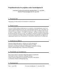 Projektbeskrivelse for projekter under Vandmiljøplan III
