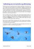 Brevduens flyvemuskler - Dansk Brevduesport - Page 2