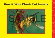 Download a PDF Sample of Plants Eat Insects - Rainbow Resource ...