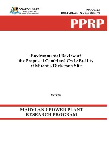 Environmental Review of the Proposed Combined Cycle Facility at ...